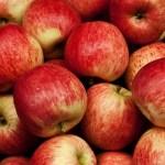 Comer uma ou duas maçãs é uma boa forma para enganar a fome se ingerir muitas calorias.