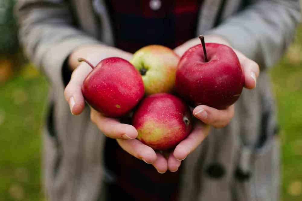 maçã - fruta ideal para diabéticos