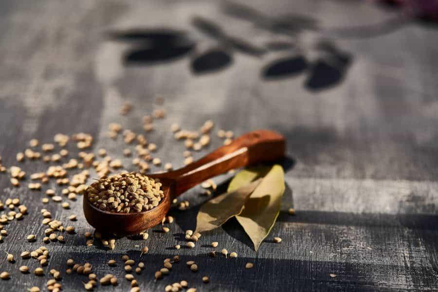 oleaginosas e sementes