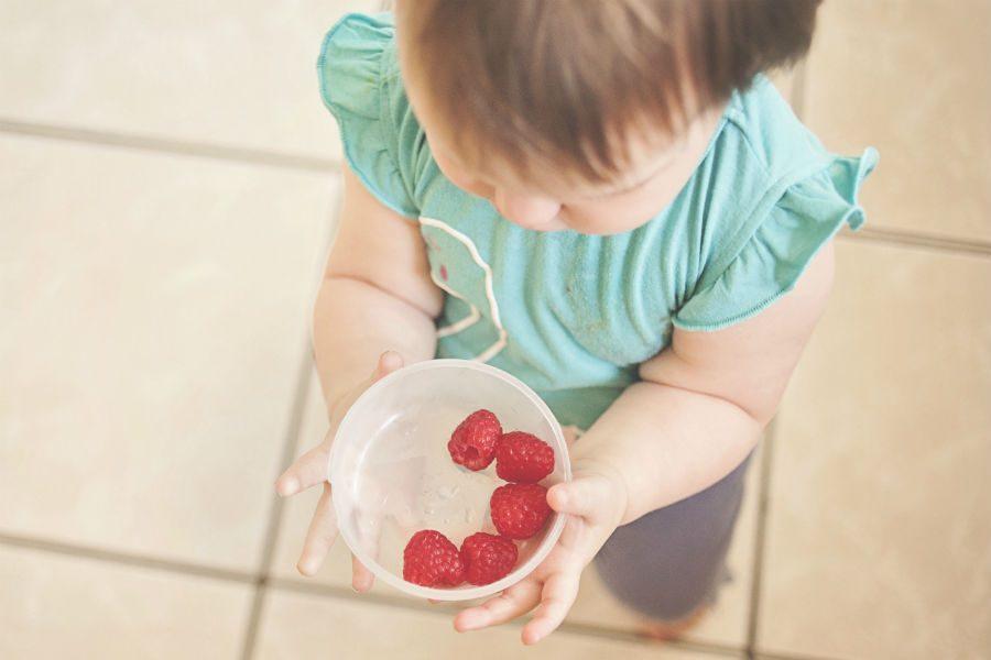 que alimentos oferecer ao bebê