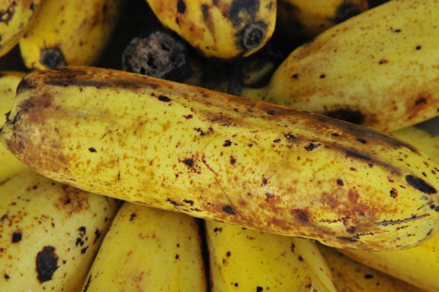 diabético pode comer banana