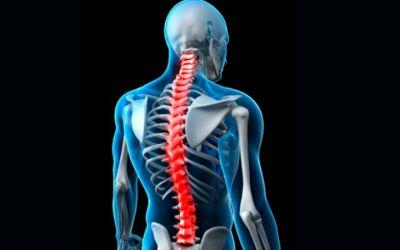 Dores nas costas são a principal queixa dos doentes