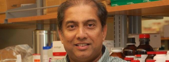 Cancro da próstata: Progressos no desenvolvimento de um teste de urina para deteção