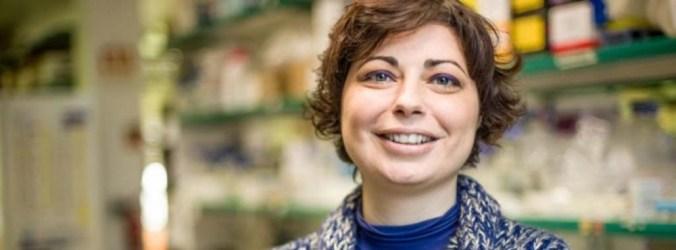 Consórcio de investigação lança projeto de ensaio serológico em Portugal