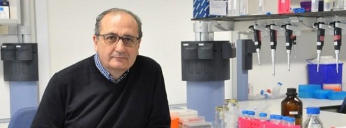 Investigadores criam novo método que deteta fungo que causa pneumonia severa