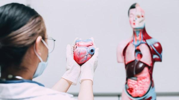 angina microvascular - qualidade de vida