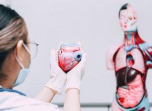 angina microvascular - doenças valvulares - miocardiopatia