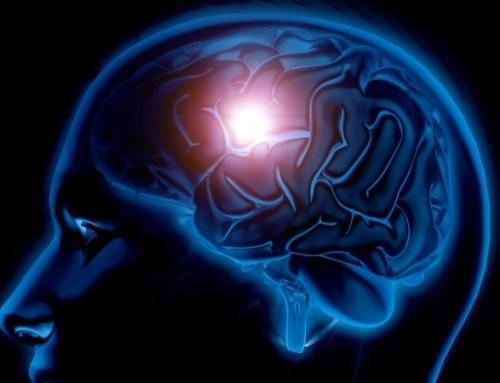 Sociedades lançam jornal no âmbito da neurologia vascular e AVC