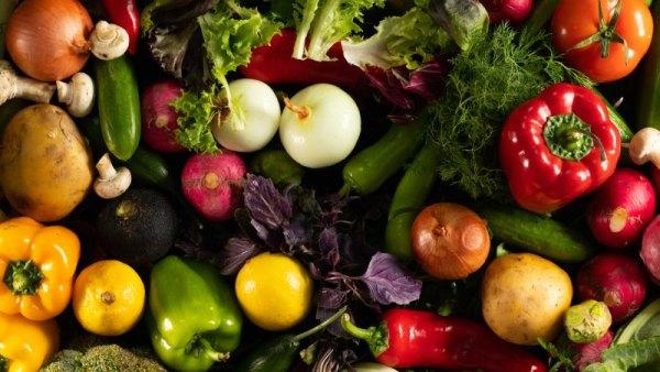 plantas e vegetais