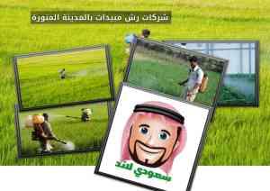 شركات رش مبيدات بالمدينة المنورة