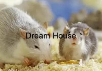 جهاز طارد الفئران بالرياض