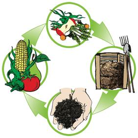 Image result for what is composting