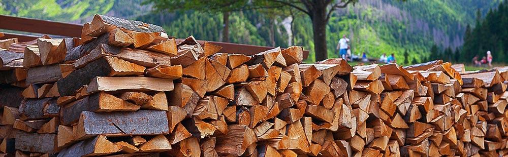 Подготовленные дрова для бани
