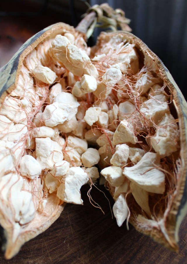 Baobab, or mbuyu, fruit.