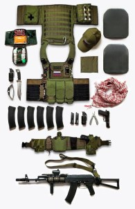 plate carrier and combat gear