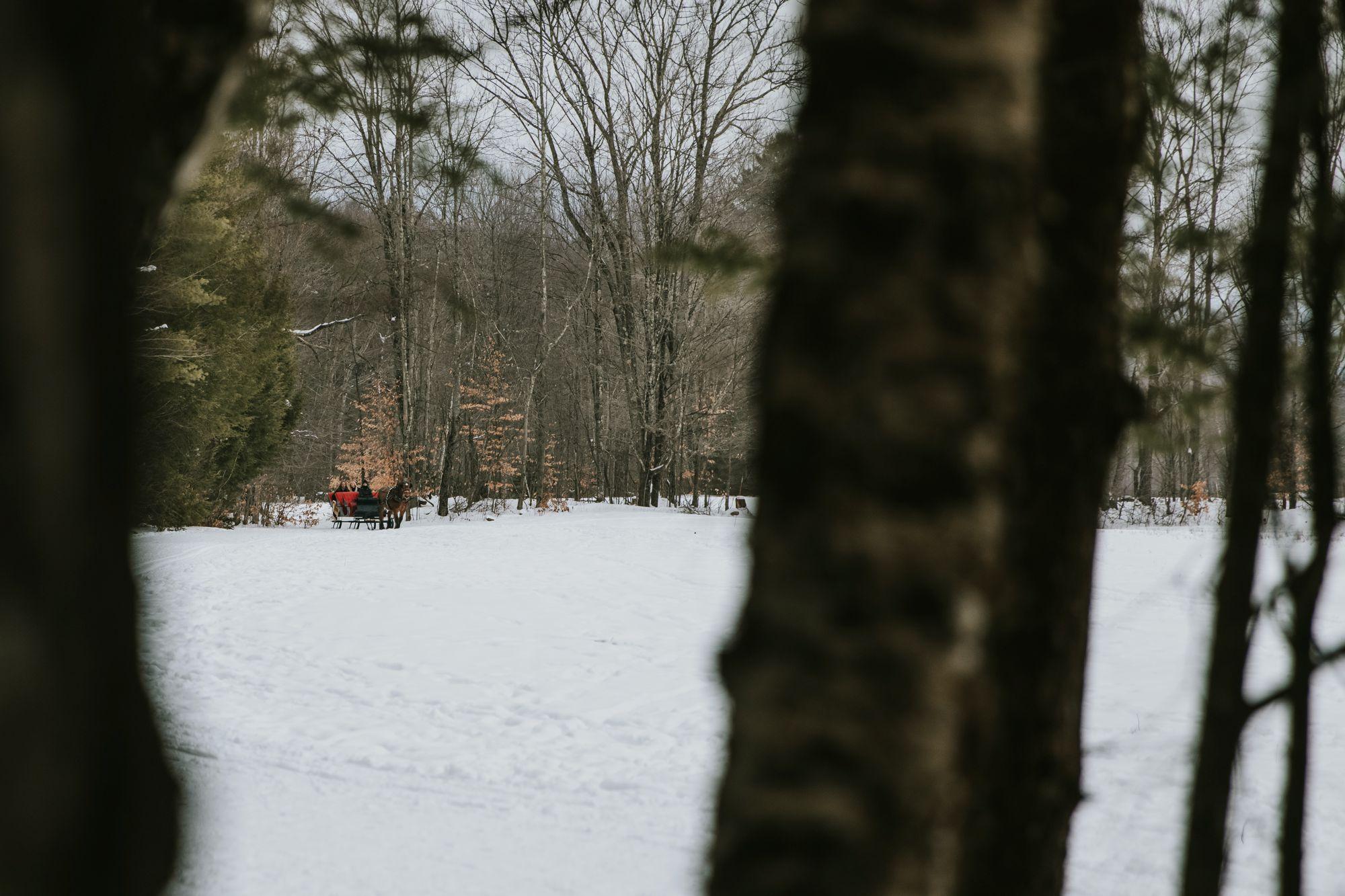 Sleigh Ride Stowe Vermont