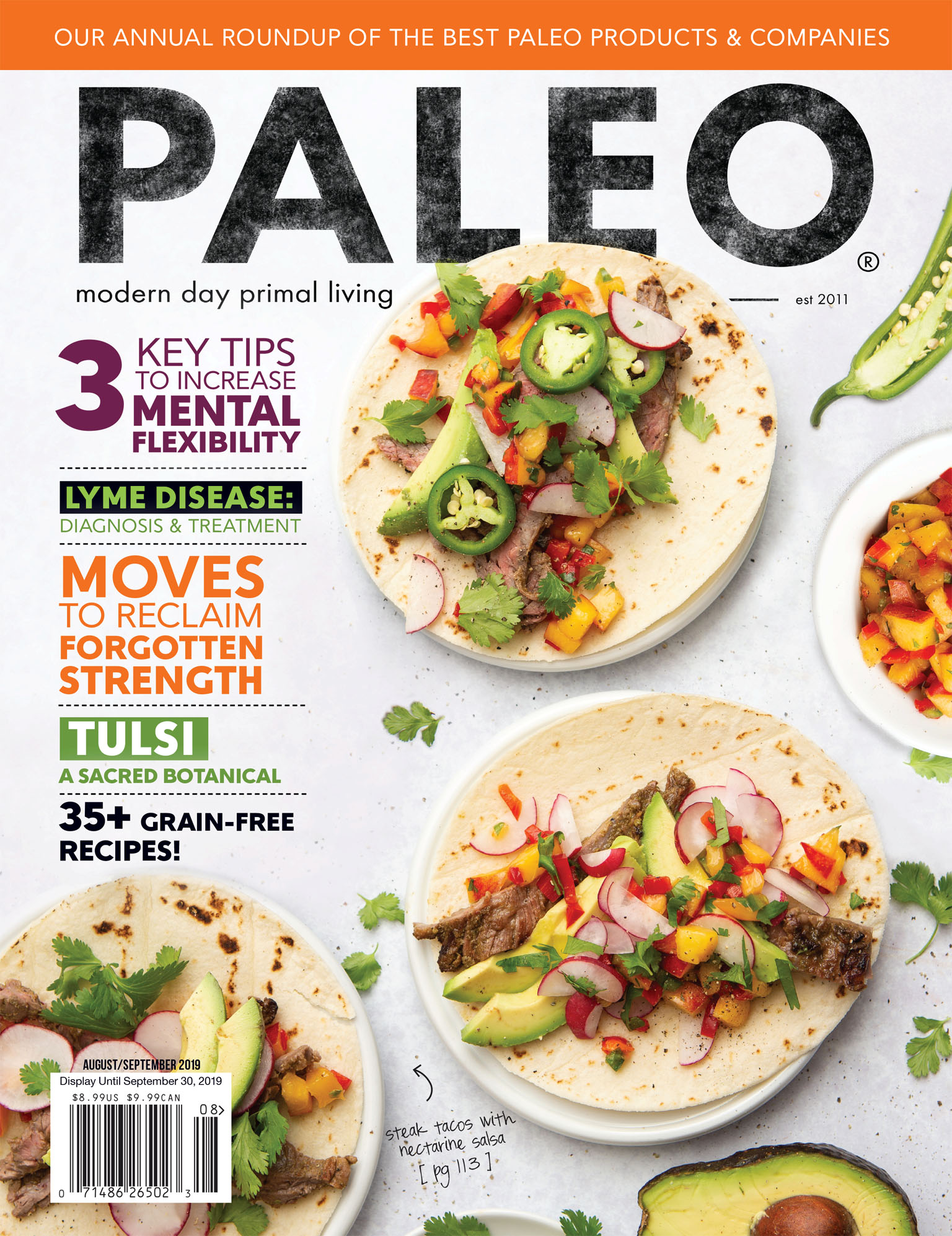 Cover photo for Paleo Magazine - Steak Taco Food Photography
