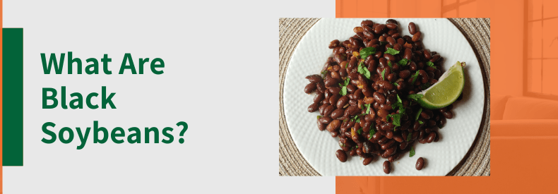 """Text reads """"What Are Black Soybeans?"""" and there is a photo of Mexican style black soybeans with cilantro and lime on a white plate."""
