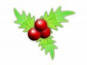 christmas-10023160