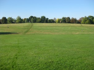View towards Cressingham Gardens from Brockwell Park