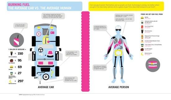 Burning Fuel: The Average Car vs. The Average Human