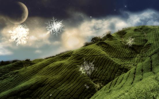Snowfall Screensaver 2011 সালের সর্বাধিক জনপ্রিয় স্ক্রীন Savers
