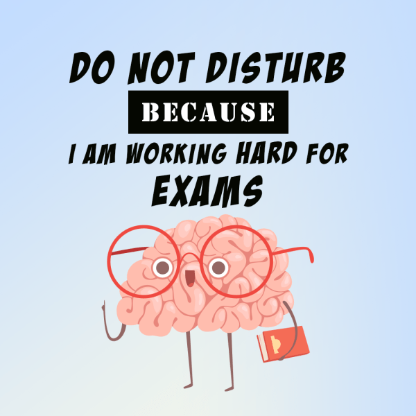 Do Not Disturb Because I Am Working Hard For Exams