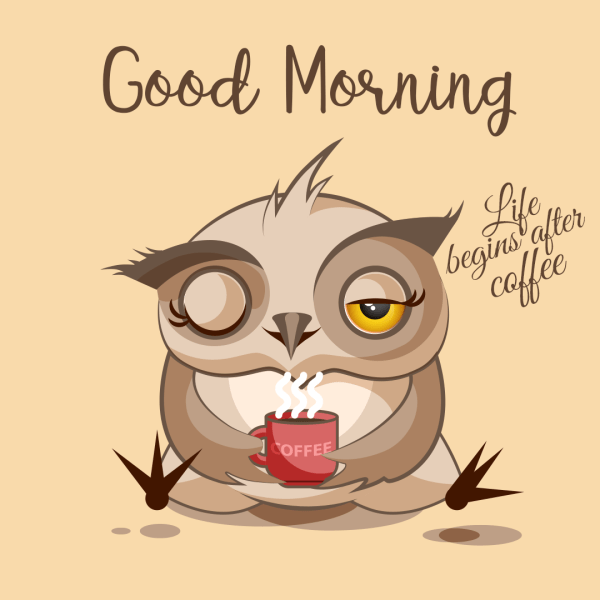 Good Morning Life Begins After Coffee