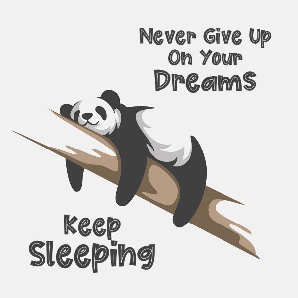 Never Give Up On Your Dreams. Keep Sleeping.