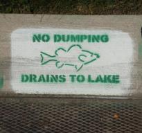 drains to lake
