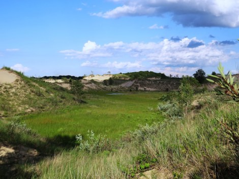 West Beach Interdunland pond