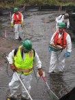 staffUSFWS cleaning up in Kalamazoo spill