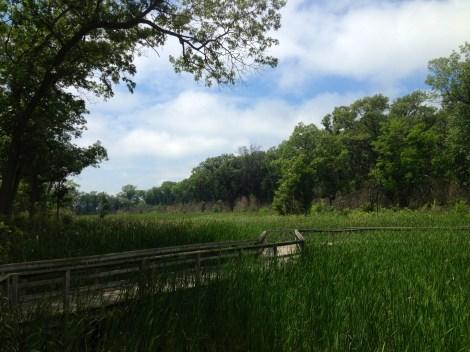 Miller Woods Trail