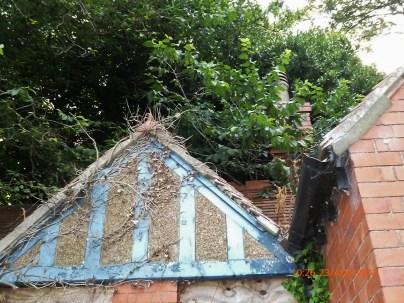 Hove Rec cottage 18