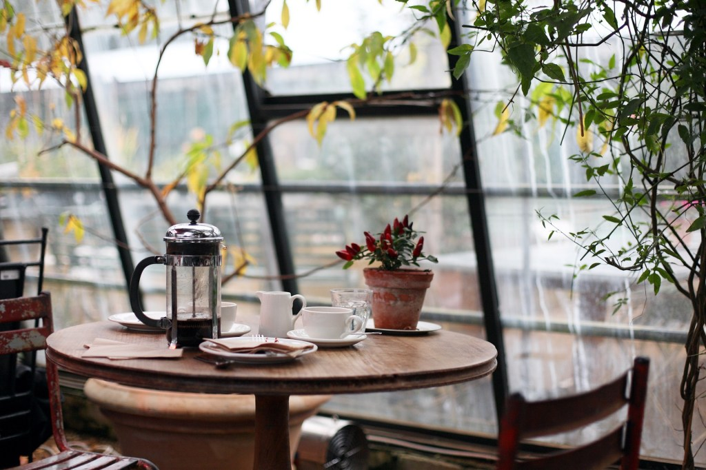 table with a pot of coffee, cup, creamer and a flower pot
