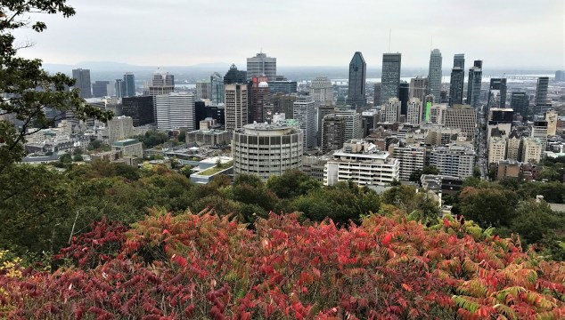 city view of Montreal from top of MontRoyal
