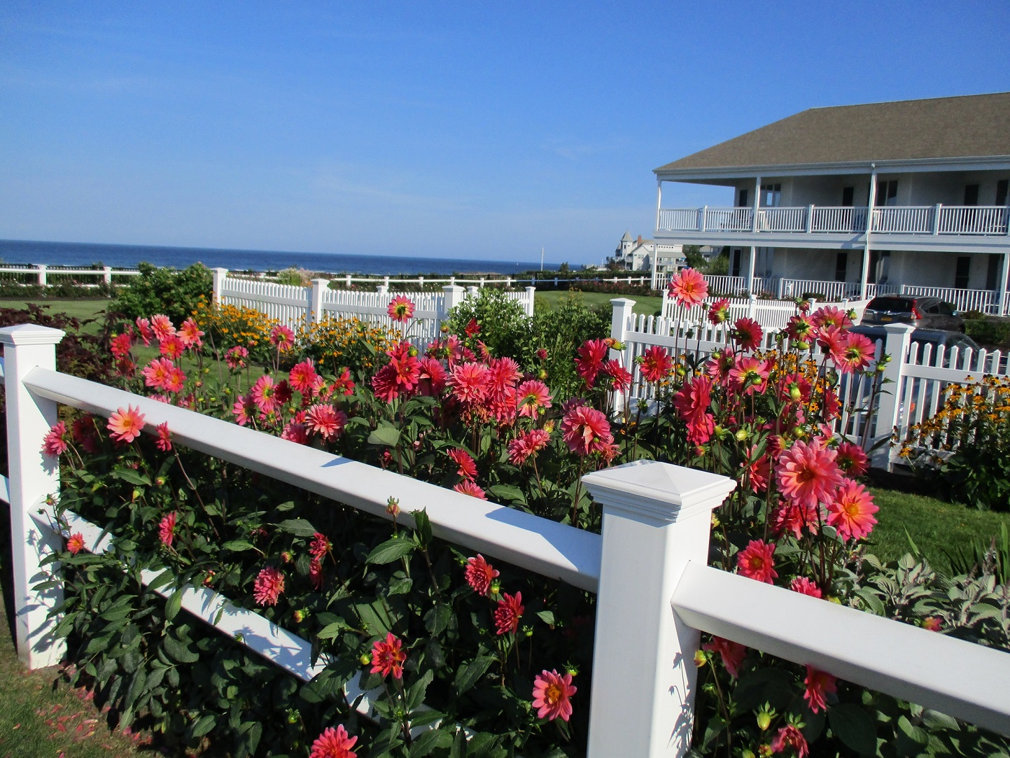 sea-town-flowers-white fence-relocate to a warmer climate in retirement