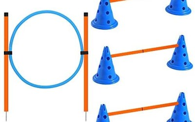 X XBEN – Set di agilità per cani, ostacoli di attività del cane, altezza…