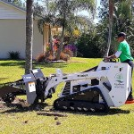 Stump-Grinding-Cleanup-Pruning-Wellington-Savemore-Tree-Service-Bobcat_2
