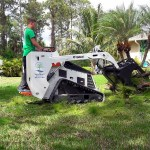 Tree-Trimming-Tree-Removal-Cleanup-Pruning-Wellington-Savemore-Tree-Service_3