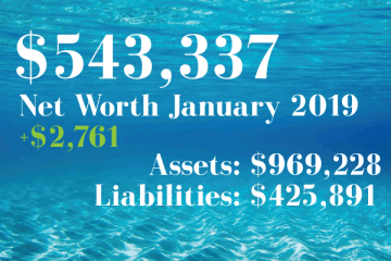Net Worth: 2019-01