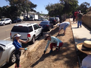 04-pvs-cleanup-aug-13-2016