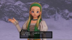 Dragon Quest XI (2)