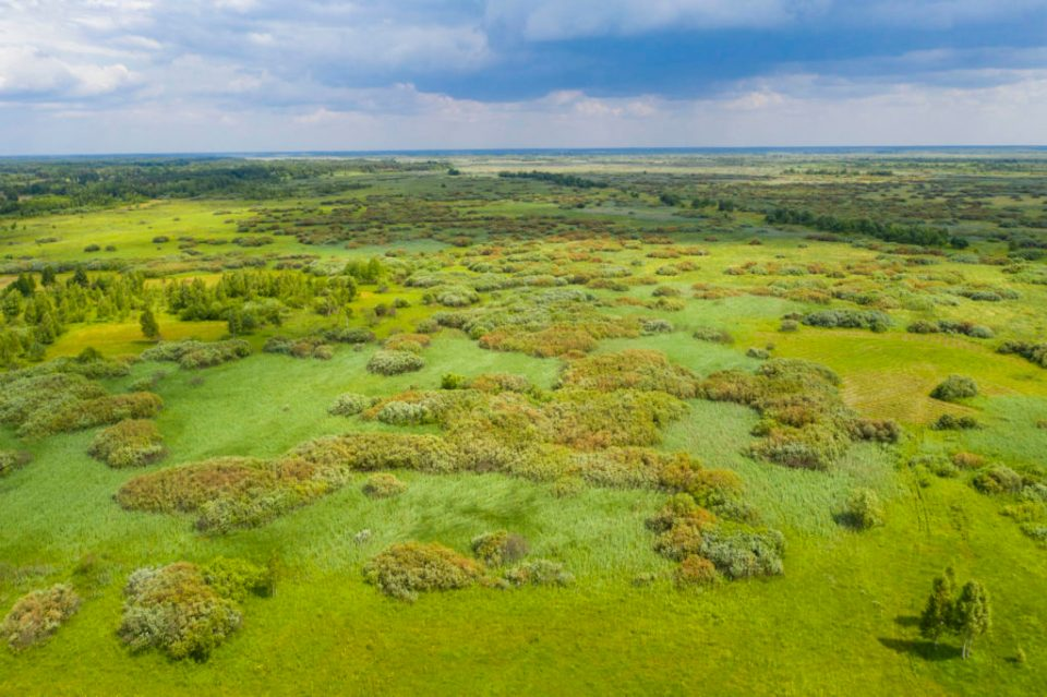 https://i1.wp.com/savepolesia.org/wp-content/uploads/2020/03/DJI_0111_Landscape_traditional-agriculture-1024x682.jpg?resize=960%2C639&ssl=1