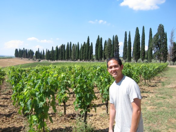 Avignonese, home of the crazy vin santo dessert wine