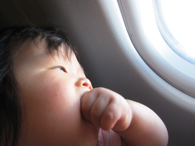 Adding An Infant To An International Award Ticket On United Airlines Asthejoeflies