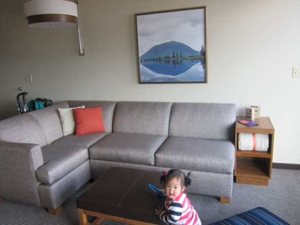 Our living room with sofabed