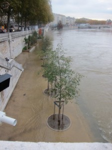 Flooding from the Saone?