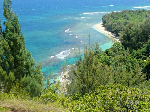Hawaii is a destination on almost everyone's travel list. You can defray the cost of flying to Hawaii by flying to Hawaii with miles and points. Here's a list of which airlines fly to Hawaii and how you can book flights with miles and points. #hawaii #travel #milesandpoints #hawaiitravel #hawaiiflights