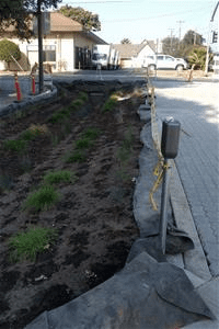Infographic of road, sidewalk, and houses with green infrastructure elements: rain gardens, tree & planter boxes, bioswales, stormwater curb extension, green roofs